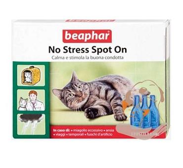No stress spot ongatto3pipet